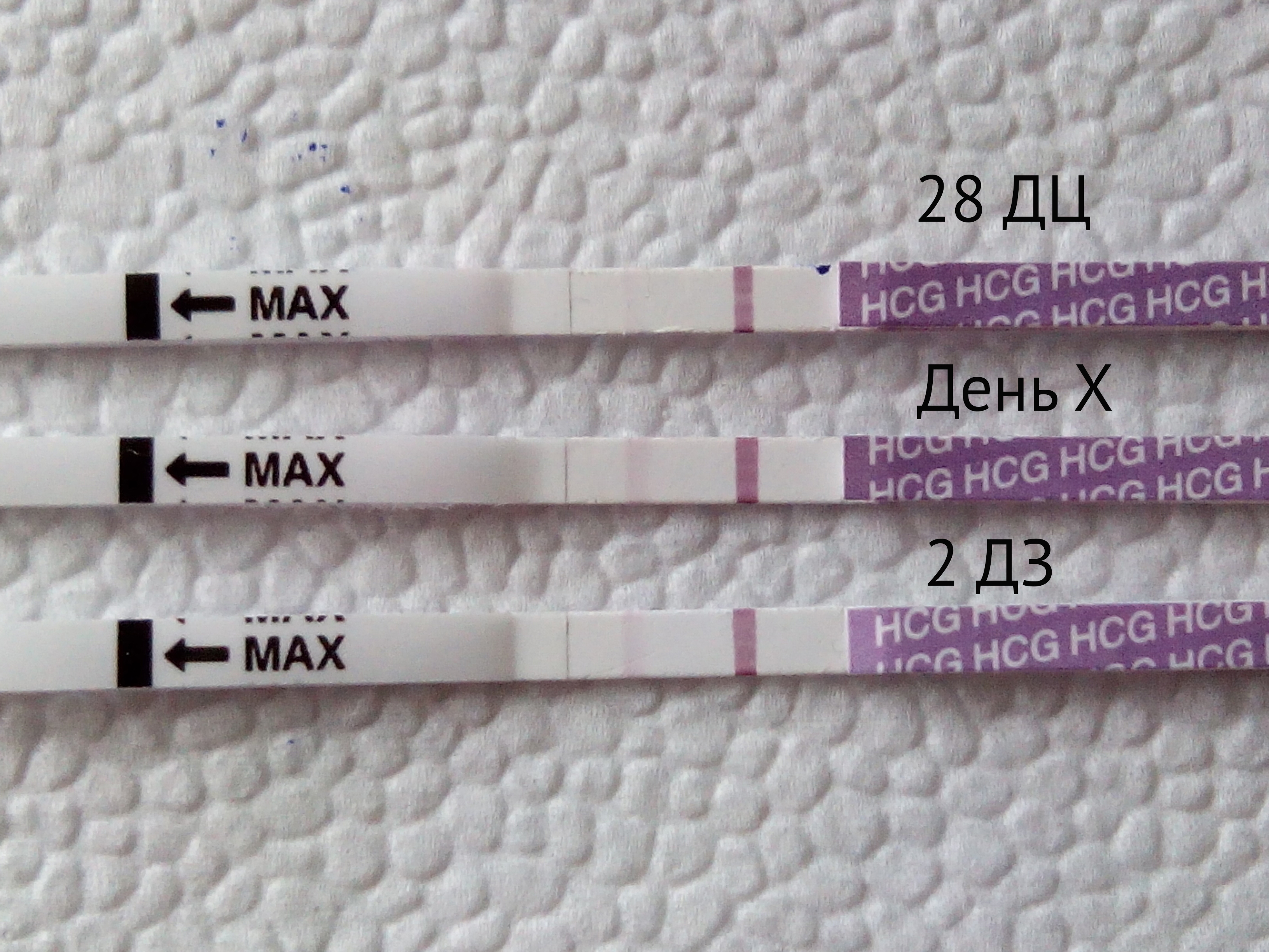 Цикл 28 дней когда делать тест на беременность